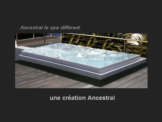spa de nage encastrable tout savoir sur le spa de nage encastrable ancestral 1er fabricant. Black Bedroom Furniture Sets. Home Design Ideas